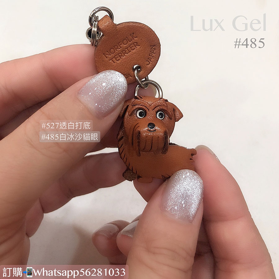 Lux Gel #485冰沙貓眼系列